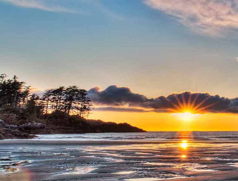Things to Do in Tofino & Ucluelet